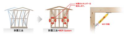 MER system.jpg