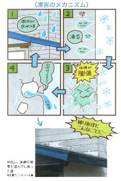 楽々通信12月号凍害.png